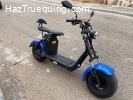 Granscooter Citycoco I